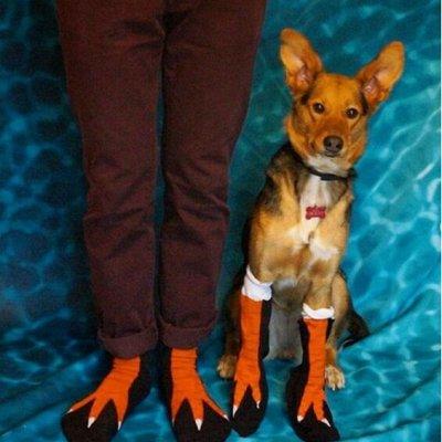 Бабушкины носки. Бабушка плохого не посоветует! — Коллекция Коты и собаки — Носки и гольфы