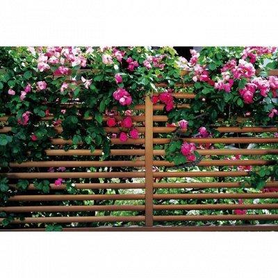 САД-огород, обустройство сада, рассадники, удобрения — Фотосетки — Садовый инвентарь