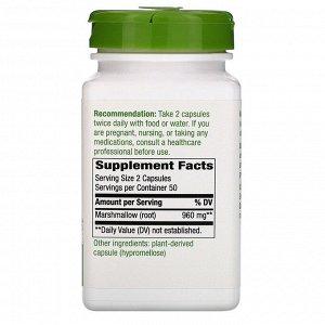 Nature&#x27 - s Way, Корень алтея, 480 мг, 100 вегетарианских капсул