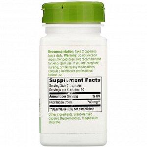 Nature&#x27 - s Way, Hydrangea Root, 740 mg, 100 Vegan Capsules