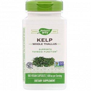 Nature&#x27 - s Way, бурые водоросли, цельное слоевище, 600 мг, 180 веганских капсул