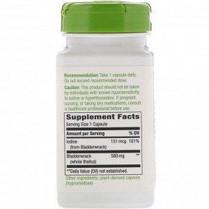Nature&#x27 - s Way, Ламинария, 580 мг, 100 веганских капсул