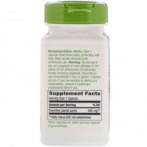 Nature&#x27 - s Way, Пиретрум девичий, 380 мг, 100 веганских капсул