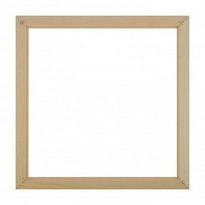 Рама для картин (зеркал) 35 х 35 х 3.0 см. дерево. липа. неокрашенная