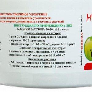 Минеральное удобрение АгроМастер  NPK 10-18-32 + 8SO3 + МЭ,для ягодных культур,  0,5 кг