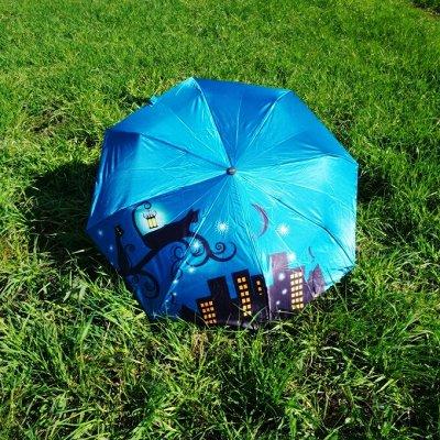 Зонты из Культурной столицы — Зонты женские — Зонты и дождевики