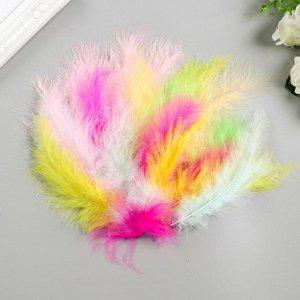 Перья декоративные страусиные, 10-12 см (набор 24 шт) 6 цветов, пастель, ассорти