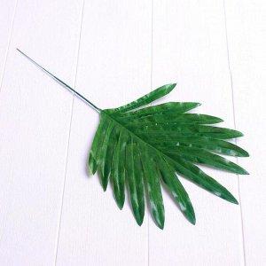 Лист искусcтвенный «Пальма», 40 ? 17 см