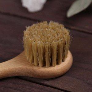 Щётка для лица, деревянная, натуральная щетина, с верёвкой