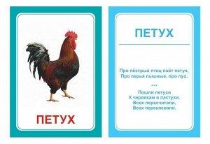 """Логопедические карточки """"Логопедка """"Щ+Х"""""""""""