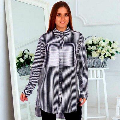 21. DRESS-Яркий трикотаж от 42 до 70 размера! Новинки! — Блузки. Рубашки — Блузы