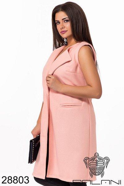 BALANI осень 2020.Женская одежда. — Верхняя одежда XL+ — Верхняя одежда