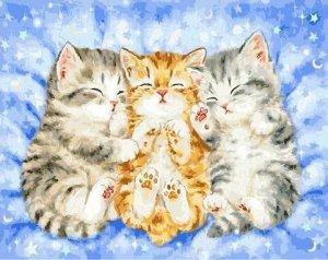 "Набор живописи по номерам 40х50см ""Спящие котята"""