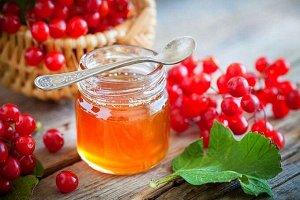 КАЛИНА (100% калина с медом)