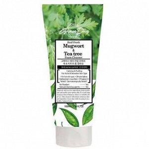 Пенка, для умывания с экстр.полыни и чайного дерева/real fresh mugwort & tee-tree foam cleansing, GRACEDAY, 100 г, (100)