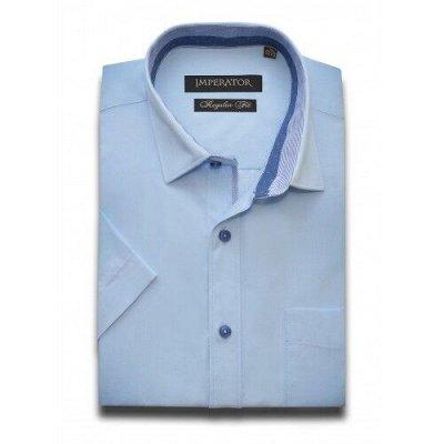 Рубашки TSAREVICH,IMPERATOR   — Мужские рубашки(короткий рукав) — Мужчинам