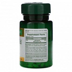 Nature&#x27 - s Bounty, Folic Acid, 800 mcg, 250 Tablets