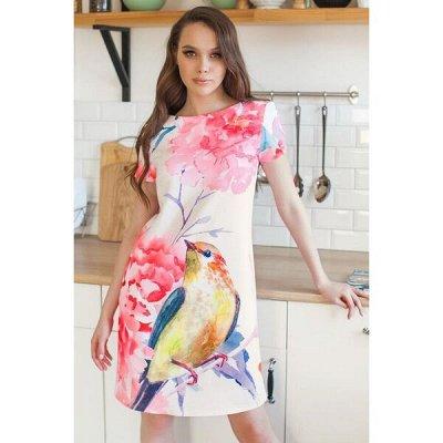Недорогие платья и шторы  - от 42 до 56! Сумки шопперы — Хочу платье! - новинки — Короткие платья