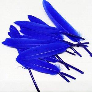 Перья. Ярко-Синий