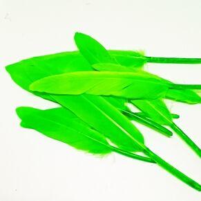 Перья. Ярко-зеленый