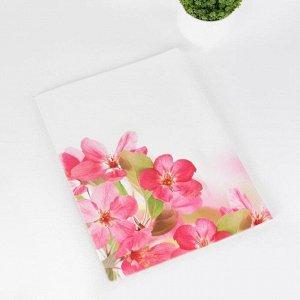 Папка для семейных документов, 1 комплект, цвет белый/розовый