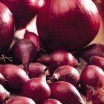 Готовимся к осенней посевной чеснок, лук-севок — ЛУК севок 0,5 кг