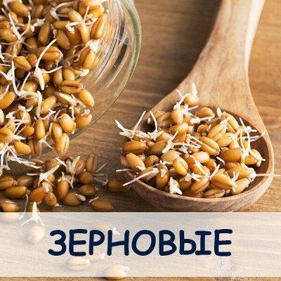 МАЛАВИТ - натуральная косметика из Алтая! — Зерновые — БАД
