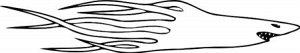 Узор на бок 338 Акула (комплект из 2-х штук на оба бока)