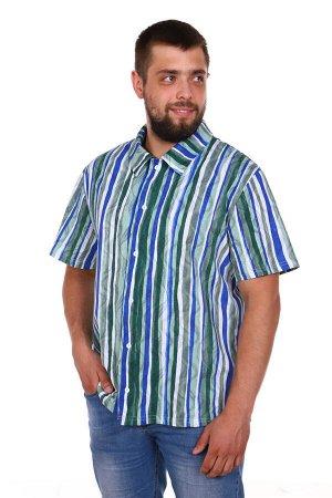 "Шансон Рубашка ""Шансон"". Трикотаж - Кулирка. Хлопок 100%. Размеры 50- 64"