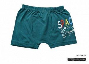 Трусы для мальчиков (шорты/аппликация) 30676