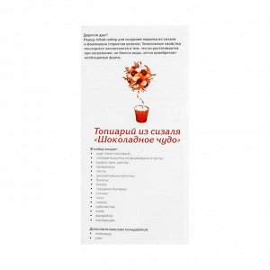Набор для творчества топиарий «Шоколадное чудо»