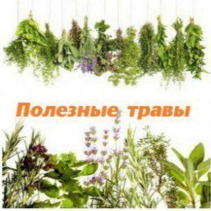 •Сибирские органические продукты • Новинки от 10 мая! — Лекарственные травы  — Пищевые добавки