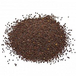 Горчичное семя Черное