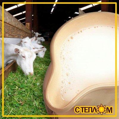 ☀ЗДОРОВЬЯ ВАШЕМУ ДОМУ☘Фермерские продукты☘Натурально!Вкусно! — ☘МОЛОЧКА КОЗЬЯ фермерская (МОРОЖЕНОЕ, СЫРЫ, МОЛОКО) — Молочные продукты