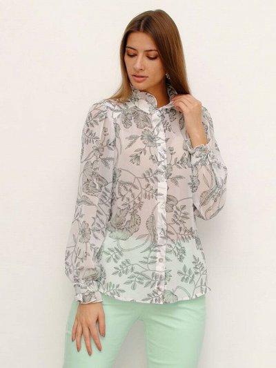 Растущий животик + Женская Одежда на Каждый день — Рубашки и блузки — Одежда