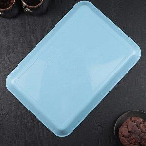 Поднос 30?21 см, цвет голубой