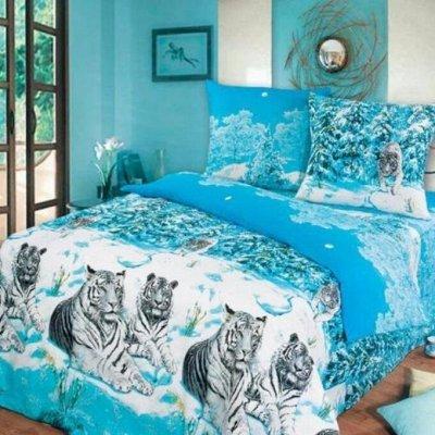 ECOLAN - домашний текстиль, яркие принты! Наматрасники! — Постельное белье (бязь) - 2сп — Двуспальные и евро комплекты