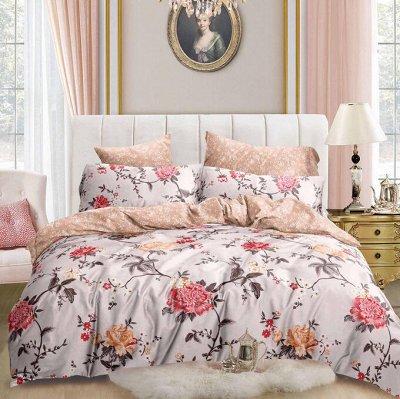 ECOLAN - домашний текстиль, яркие принты! Наматрасники! — Постельное белье (сатин) - семейный — Семейные комплекты