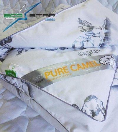 ECOLAN - домашний текстиль, яркие принты! Наматрасники! — Одеяла серии EcoStar — Одеяла