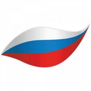 Флаг России 13