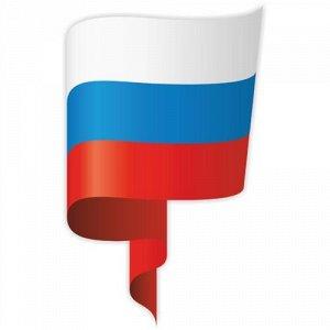Флаг России 9