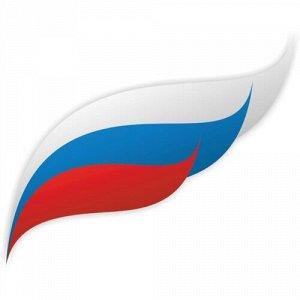 Флаг России 4