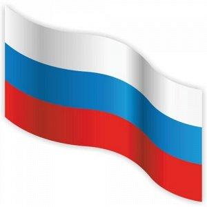 Флаг России 11