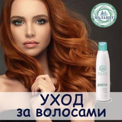 МАЛАВИТ - натуральная косметика из Алтая! — Средства по уходу за волосами Малавит — Шампуни