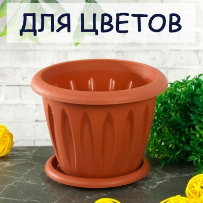 Мартика: Пластик и хоз.товары для Вашего дома — Товары для цветоводства и растениеводства! — Комнатные растения и уход