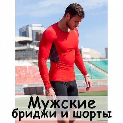 S*h*i*l*c*o-спортивная одежда — Бриджи и шорты мужские — Одежда