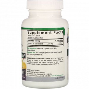 Nature&#x27 - s Answer, Vitamin C, 1,000 mg, 100 Vegetarian Capsules
