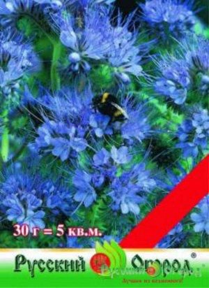 Фацелия 30гр (НК) Сидерат (миним 5шт)