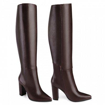 Sateg-6. Обувь из натуральной кожи 33-43 размера! — Демисезон. Женские сапоги, ботфорты — Для женщин