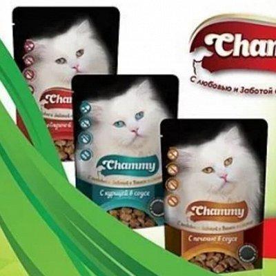 Karmy - корм для собак и кошек премиум класса! №30 — Chammy с любовью и заботой о Вашем питомце — Корма